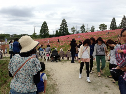 愛知牧場がいつのまにか大人気スポットになっている件