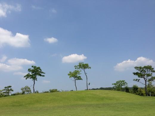 日進市総合運動公園のプールでリゾート気分を満喫
