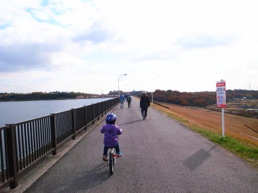 子供とサイクリングするなら愛知池がいい感じ