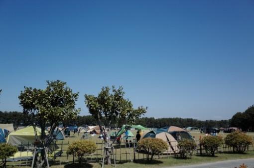 チェックイン時間が早い貴重でありがたいオートキャンプ場「渚園キャンプ場」へ行ってきた